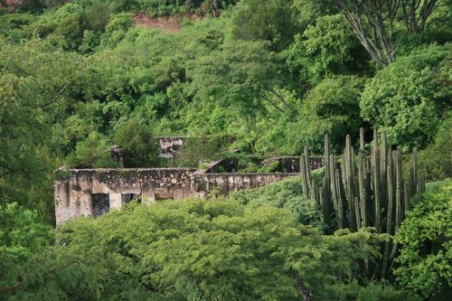 Fotografias de Atenguillo - Estado de Jalisco - Fotos de Estado de Jalisco…