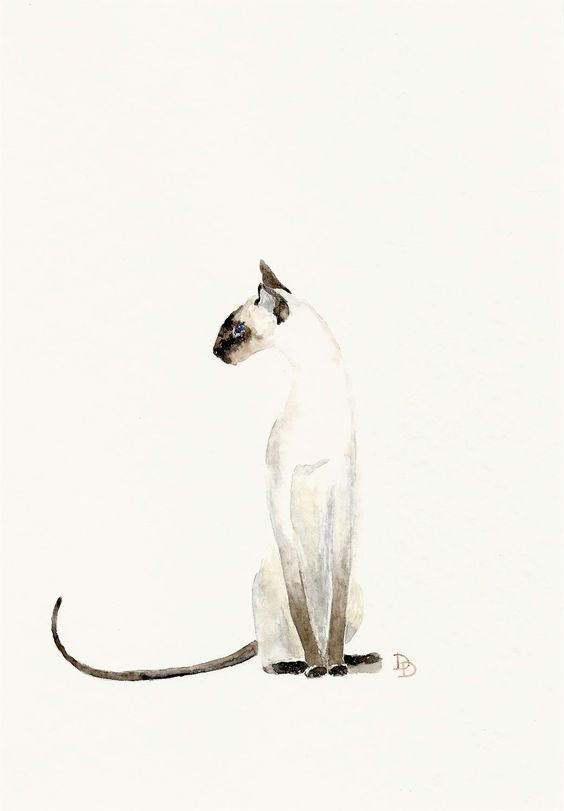 Because we both love them so much. Siamese cat etsy