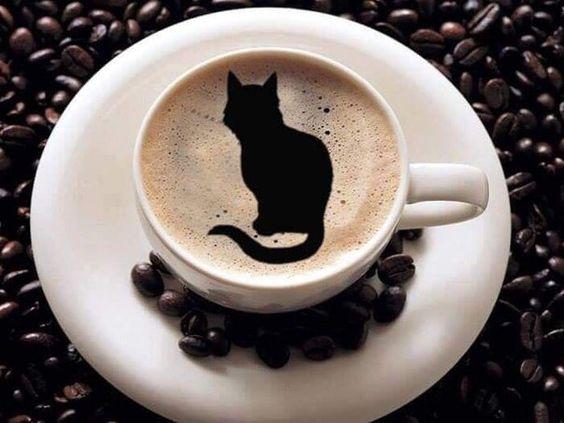 黒猫がかわいいラテアートの壁紙