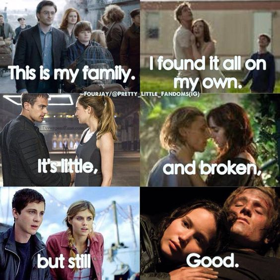 This is my family. (Harry Potter, Divergent, Mortal Instruments, Percy Jackson, Hunger Games).