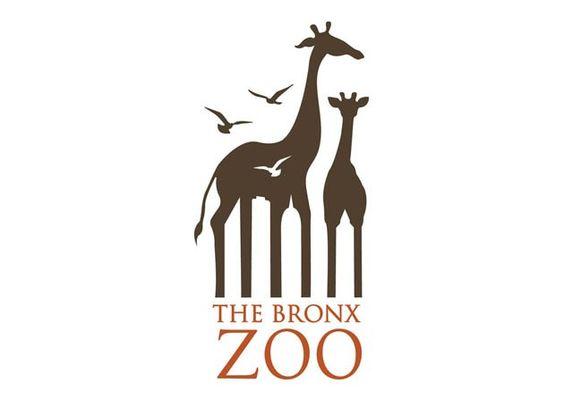 Caroline Ann Madigan - The Bronx ZOO