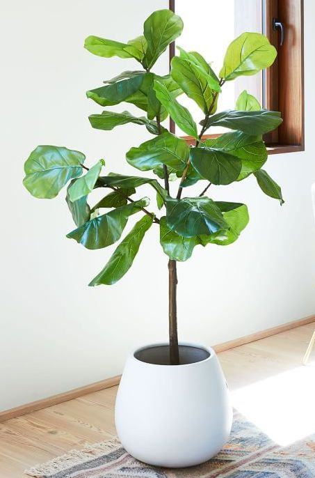 Faux Fiddle Leaf Fig Plant