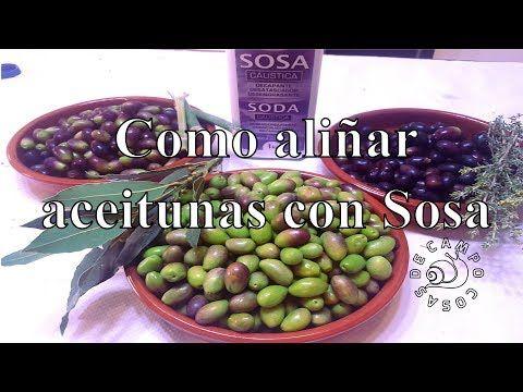 Como Aliñar Aceitunas Con Sosa En 2 Dias Youtube Aliñar Aceitunas Aceitunas Encurtidos