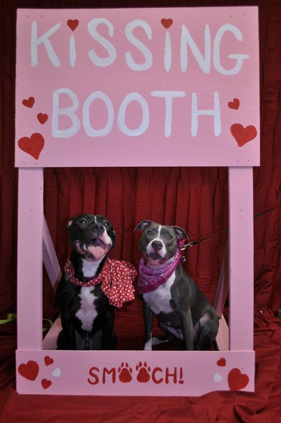 Kissing Booth Babies And Events On Pinterest