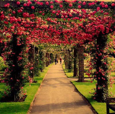 roseville, capital of flowerland on pretty planet