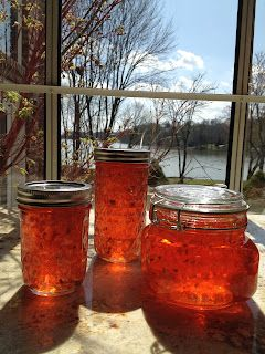 My Most Requested Recipes: Hot Pepper Jelly
