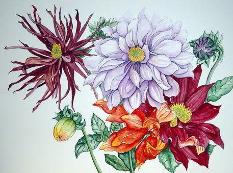 'Dahlien' von Maria Inhoven bei artflakes.com als Poster