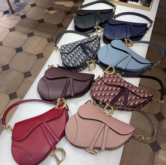 "Dior Fan Page on Instagram: ""Dior Saddle Bag ?? #dior #diorinternational"""