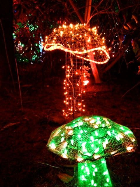 Toadstools To Topiaries 11 Creative Mushroom Projects For Your Garden Diy Christmas Lights Mushroom Decor Outdoor Christmas Lights