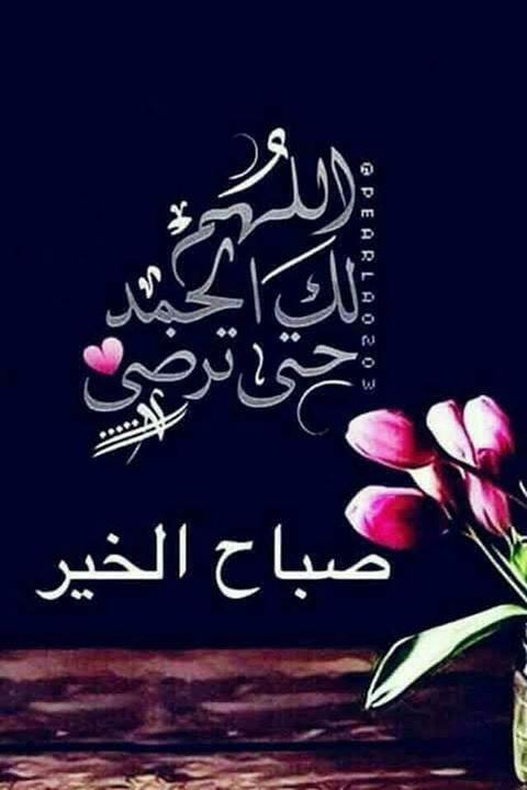 وفي الصباح فتشوا عن رائحة الأمل ورسائل التفاؤل وعناوين الفرح ستجدون الصباح حافلا بك Beautiful Morning Messages Islamic Quotes Wallpaper Good Morning Arabic