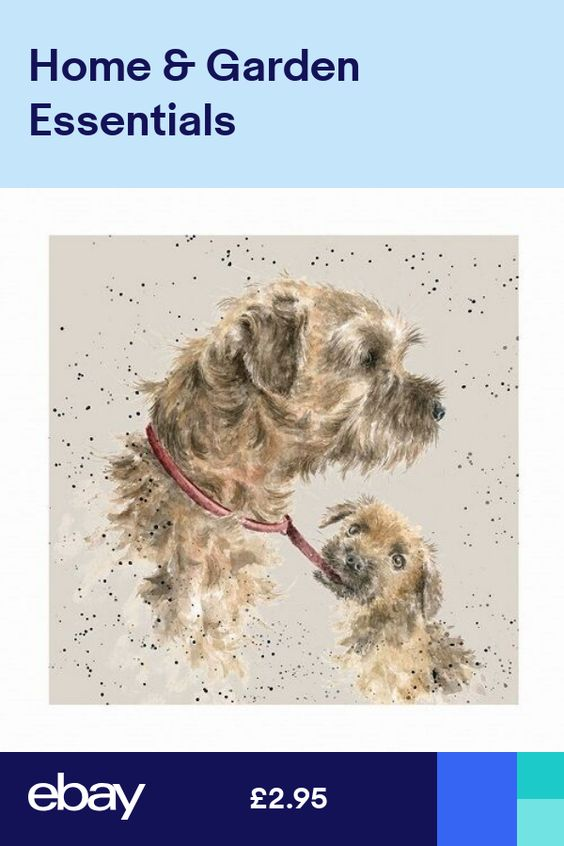 Wrendale Designs A Dog S Life Greeting Card Border Terrier Puppy Border Terrier Puppy Wrendale Designs Dog Life