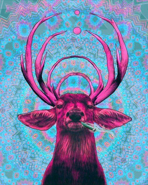 Cerf Psychedelique And Psychedelic Art On Pinterest