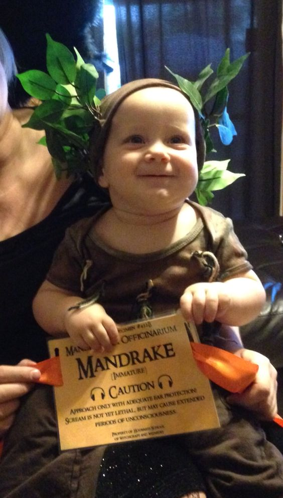 Image result for mandrake baby costume