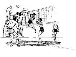 Le volleyball est un sport d'équipe dans lequel deux équipes de six joueurs sont séparées par un filet. Chaque équipe essaie de marquer des points en fondant une boule sur la cour de l'autre équipe.