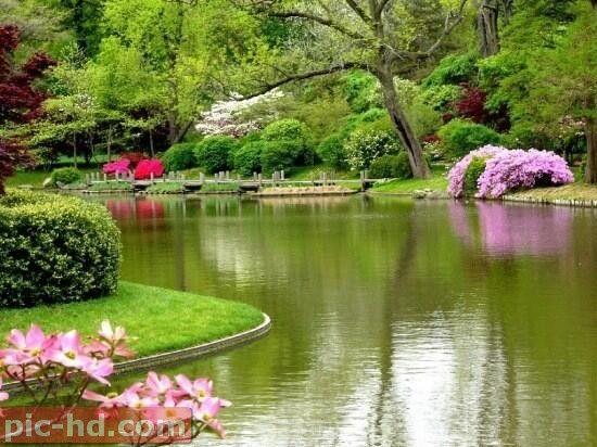 صور عن الطبيعة الخلابة خلفيات طبيعية مناظر خلابة Beautiful Nature Beautiful Gardens Nature Photography