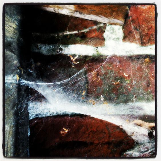 Der Zahn der Zeit. - @Frank-Michael Preuss- #webstagram