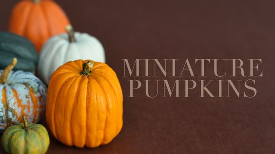 PUMPKINS • polymer clay tutorial