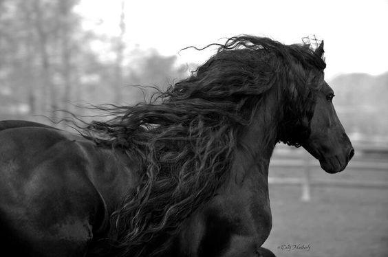Beautiful;)