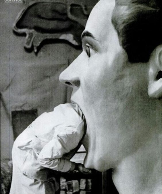 Modelo anatómico antiguo.