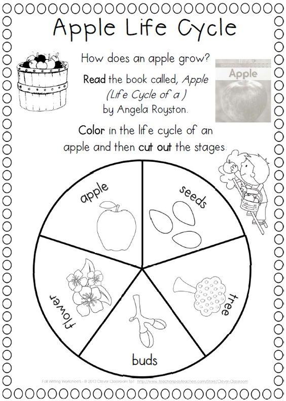 Fall Activities Worksheets