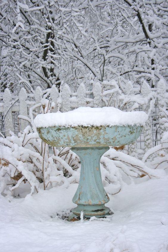 birdbath in winter...