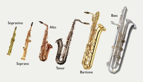 Saxophones: sopranino through bass.