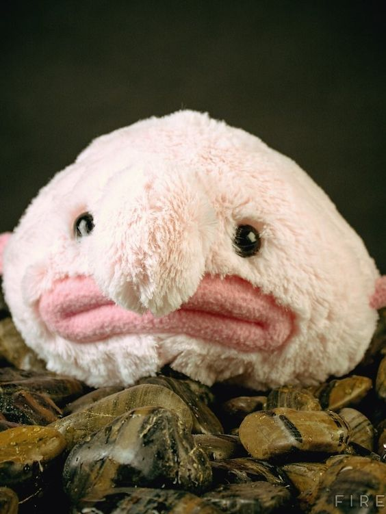 Weird Stuffed Toys 52