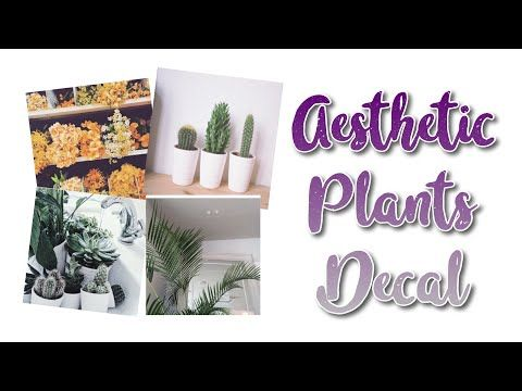 Roblox Bloxburg Aesthetic Plants Decal Id S Youtube Plant