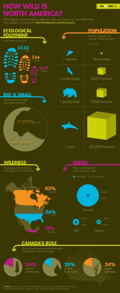 How Wild is North America?