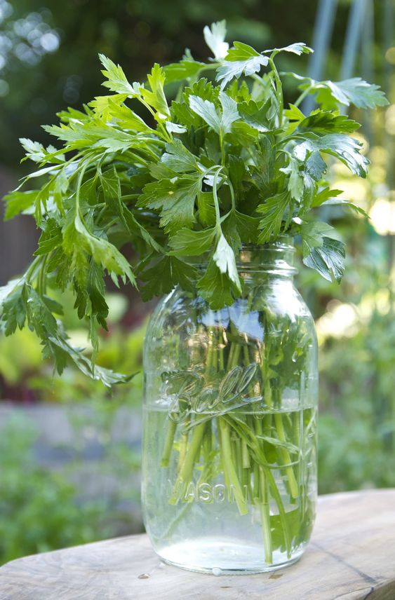 "I once read that parsley's flavor is the ""summation of all things green."" I'd say that's a fitting description of this classic, lively, summer herb."