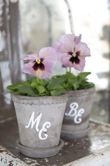 : Shower Ideas, Garden Ideas, Gardening Ideas, Flowers Plants Gardening, Violets Pansies
