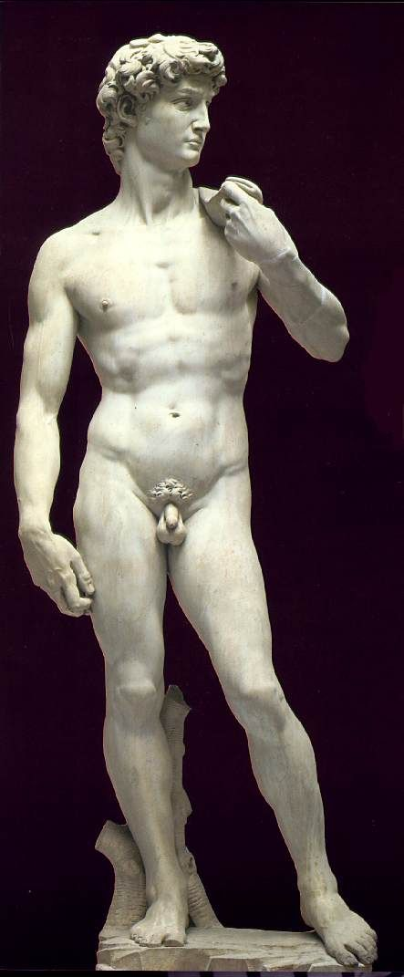 Michelangelo want to see these did not know it was about David and Goliath in the Bible beautiful story