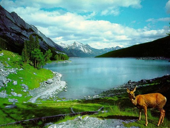 Most Beautiful Images of Nature | ... , most beautiful natural ...