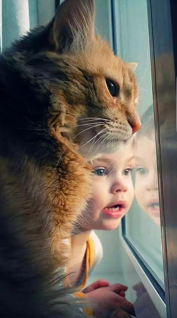 Je crois que le petit humain et son ami chat orange tigré regardent quelque chose d'intéressant.