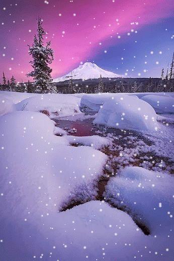 A lovely snowfall.