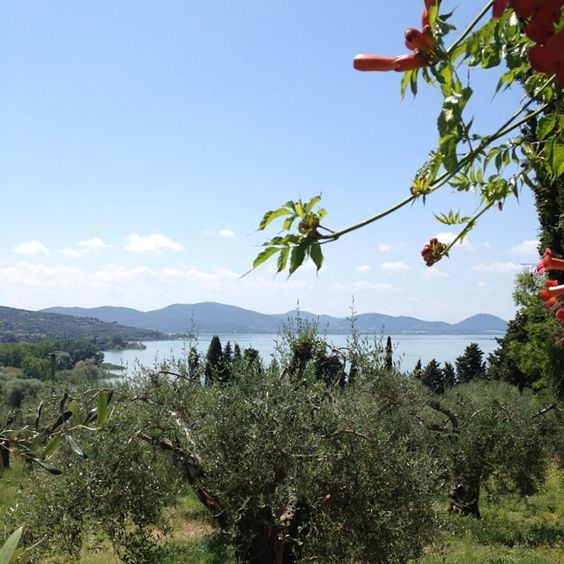 Monte Del Lago Trasimeno Vista lago dalla villa Pompili #altrasimeno foto di @giulianekorkina