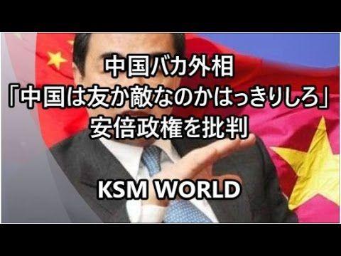 【KSM】中国バカ外相「中国は友か敵なのかはっきりしろ!面倒なことばかり起こしやがって…」安倍政権の対中認識を批判