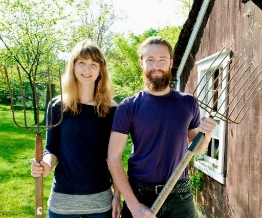 HIPSTER FARMERS: 80% of new 'grow your own' fans are newbies.