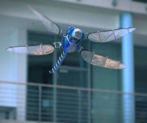 Festo BionicOpter Robot Dragonfly