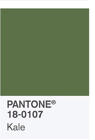 mypantone pantone pantone trend palette pantone pantone spring pantone ...