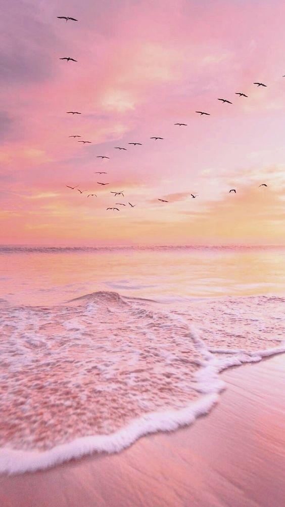Top 25 Stunning Destinations To Seek Silence Ocean Wallpaper Beautiful Wallpapers Summer Wallpaper Pastel pink beach wallpaper iphone