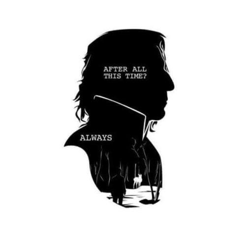 Rest in peace, professor! dans 15 dessins  en hommage à Alan Rickman par les fans d'Harry Potter ! Quels sont les plus originaux ?: