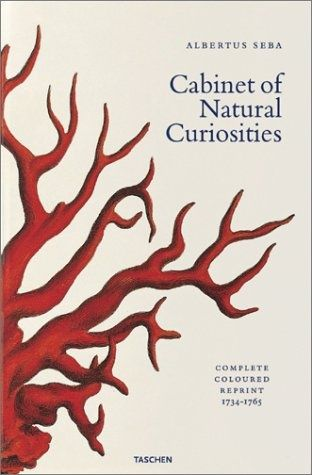 Albertus Seba's Cabinet of Natural Curiosities (Jumbo)