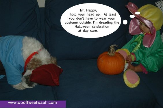 This dog is not thrilled with his costume. #pinterestfail