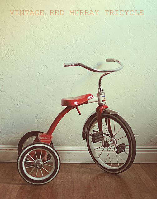 50's tricycle.  I had one.  I rode it around the basement while Mom and Dad graded eggs.:
