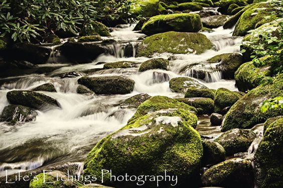 Green Stream - 8x10 Photography Print - Unique Nature gift for nature lover in your life - Tennessee Stream