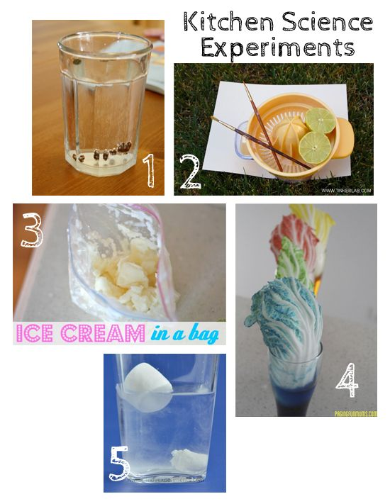 Science Experiments Experiment And Science Experiment For Kids On Pinterest