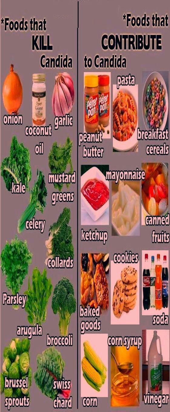 candida diet recipes app