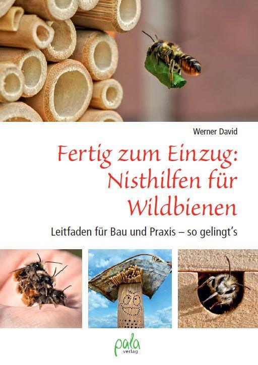 Hohle Pflanzenstängel als Nisthilfe für Insekten - Wildbienenschutz im Naturgarten
