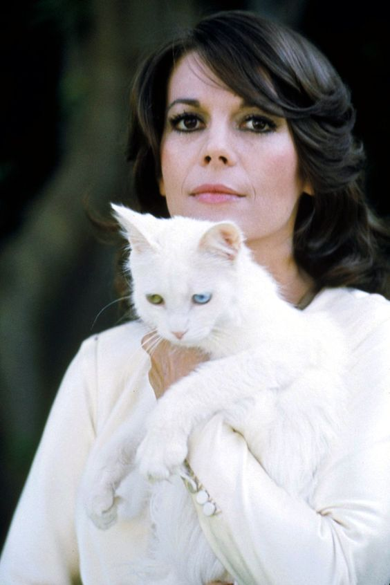 Natalie Wood has a white cat with one green eye and one blue eye.